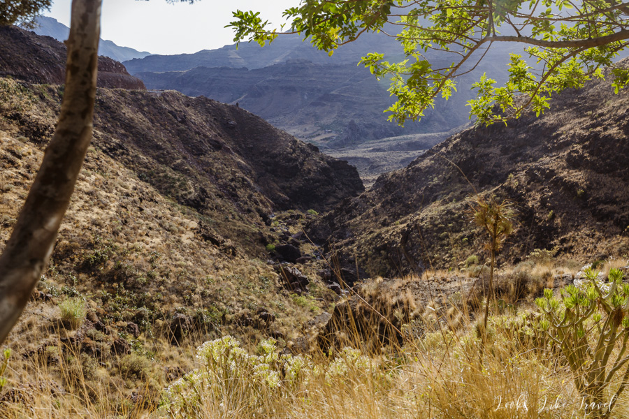 unusual valleys of the Canary Islands
