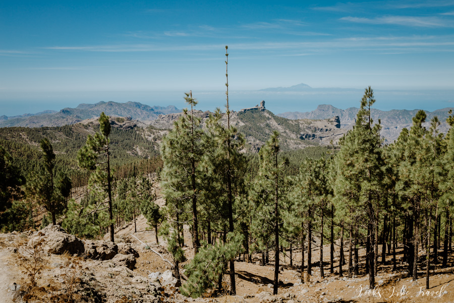an unusual view of the countryside from Pico de las Nieves