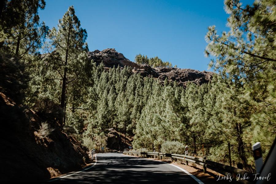 road to Aparcamiento de la Degollada de La Goleta