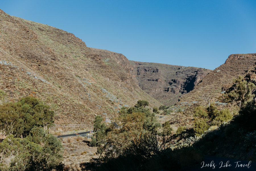 first views of Barranco de Guayadeque