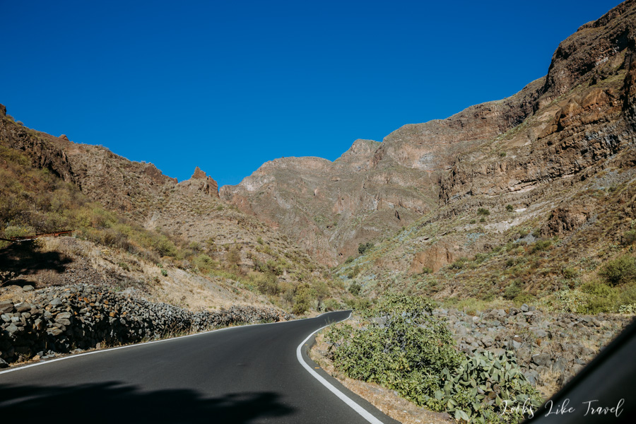 bujna roślinność, Gran Canaria