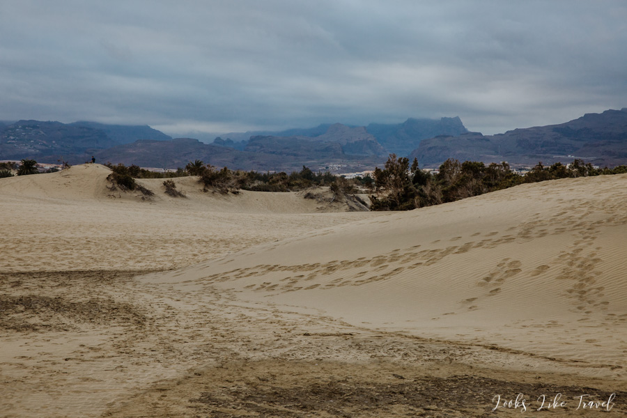 the dunes of Dunas de Maspalomas