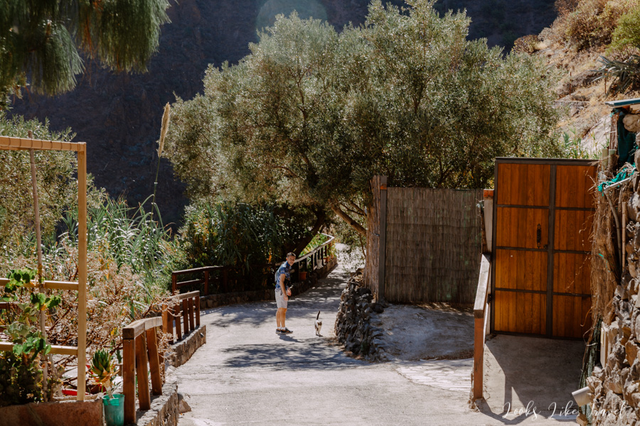 walk through the Barranco de Guayadeque