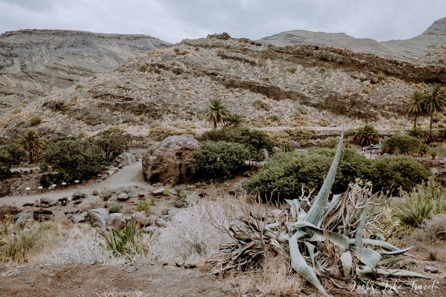 widokowa ścieżka na Gran Canarii