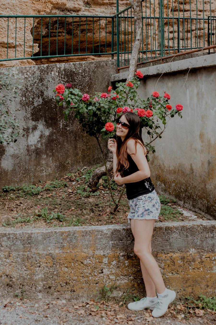 sesja z różami, Skrip