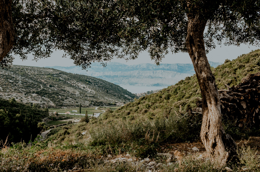 Dol, najpiękniejsza wieś w Chorwacji