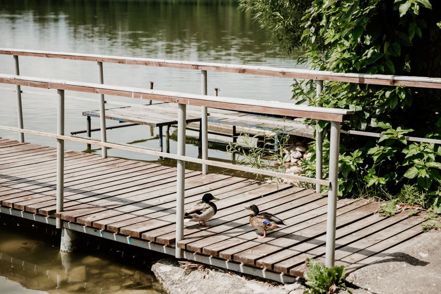 jezioro Dąbrowa Mała- Mazury
