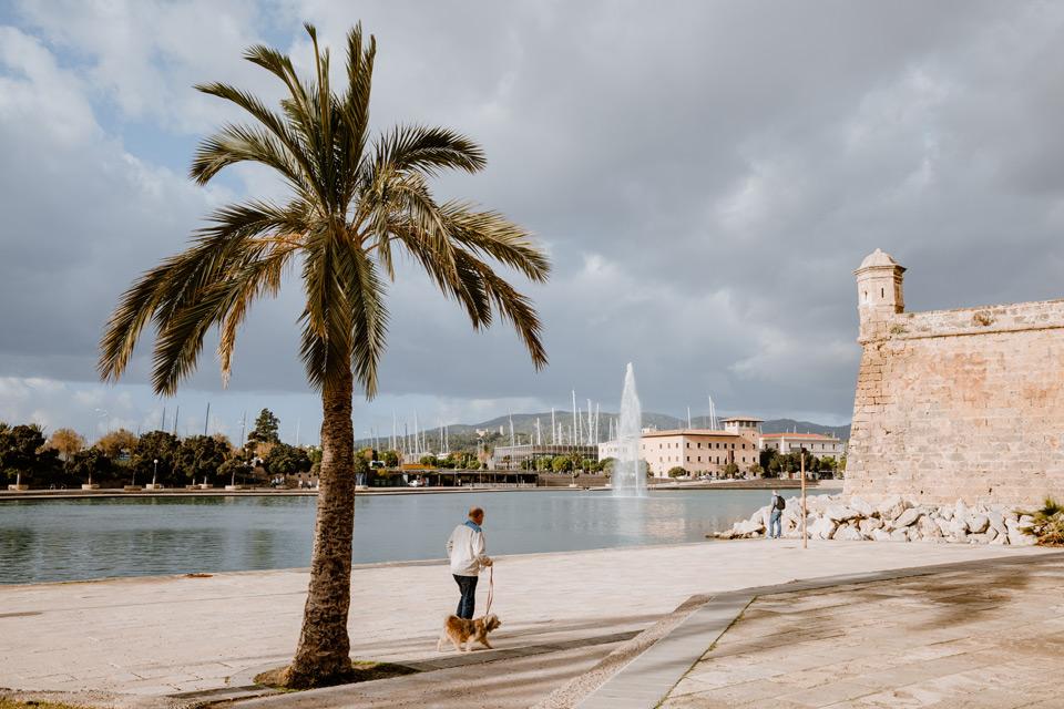 Palma de Mallorca okolice katedry