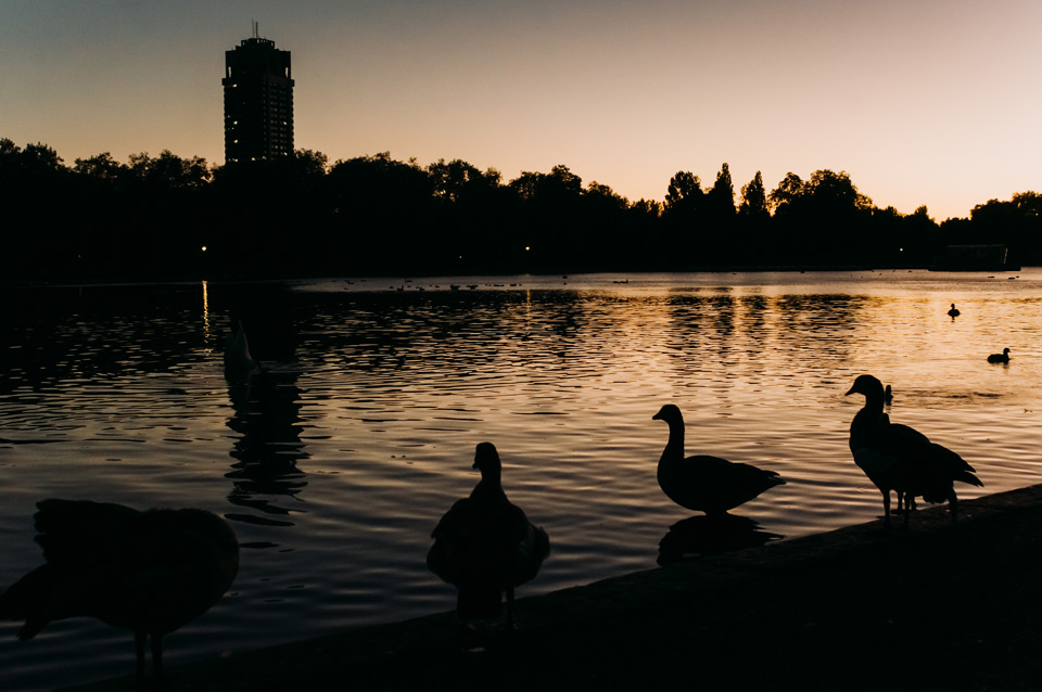 London, sunset in Hyde Park
