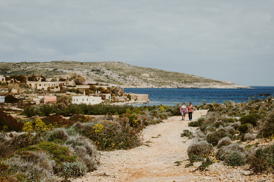 Comino, center of the island