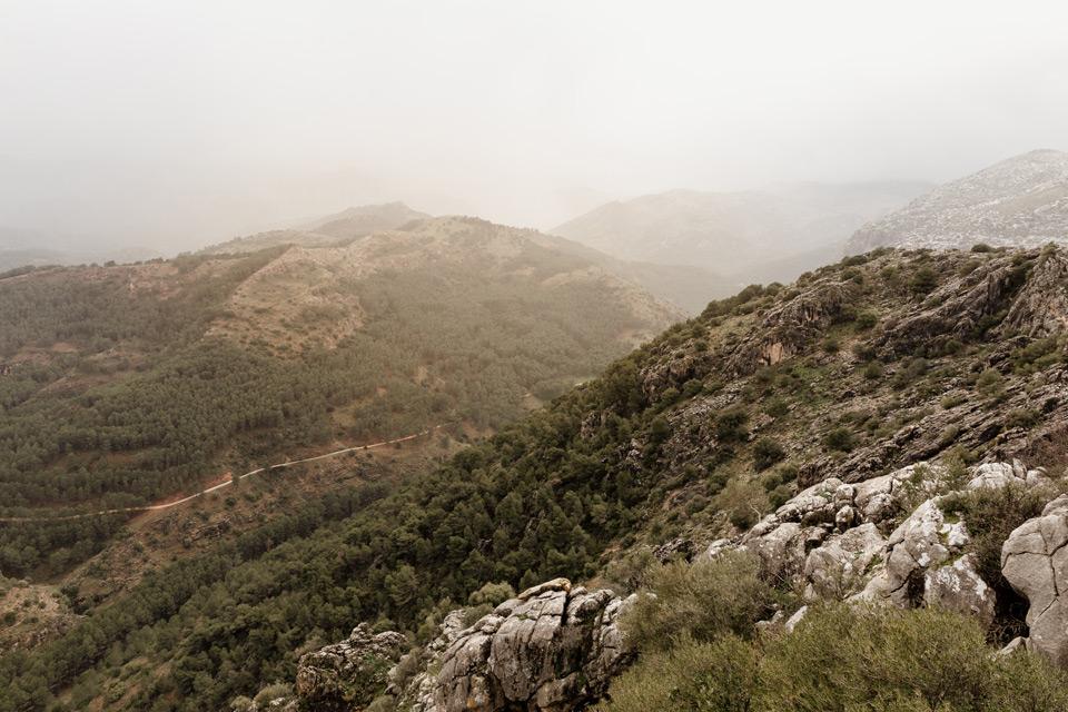 Mirador del Guarda Forestal