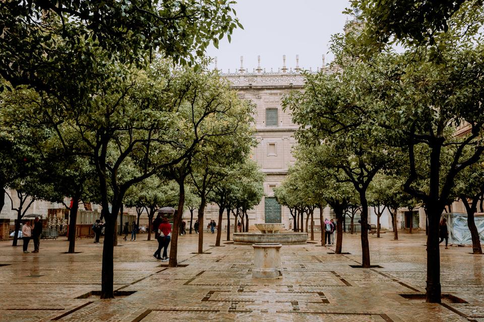 Seville, Patio de los Naranjos