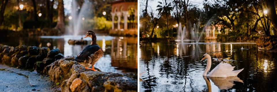 Seville, Parque de María Luisa in the evening